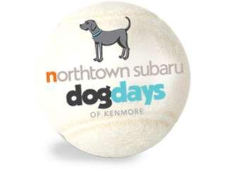 Northtown Subaru Dog Days Of Kenmore Mang Park Kenmore Events At
