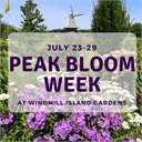 Peak Bloom Week