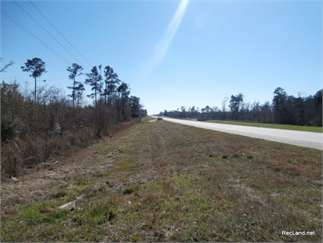 Kirbyville, Jasper County, Texas Land For Sale - 16.88 Acres