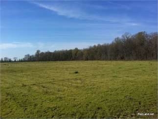 Rayville, Richland Parish, Louisiana Land For Sale - 128.17 Acres